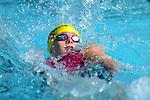 Nelson Marlborough Swim Champs