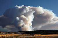 Smoke of forest fire burning on Central Plateau as viewed from Hayden Valley, September 24, 2009, Yellowstone National Park, Wyoming, USA