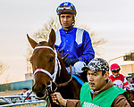 MARCH 09, 2019 : Post parade Haikal & Rajiv Maragh, the Gotham Stakes for 3-year olds at Aqueduct Racetrack on March  09, 2019 in Ozone Park, NY.  Sue Kawczynski/ESW/CSM