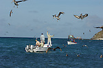 BIRDS AND BOATS IN LOS ROQUES