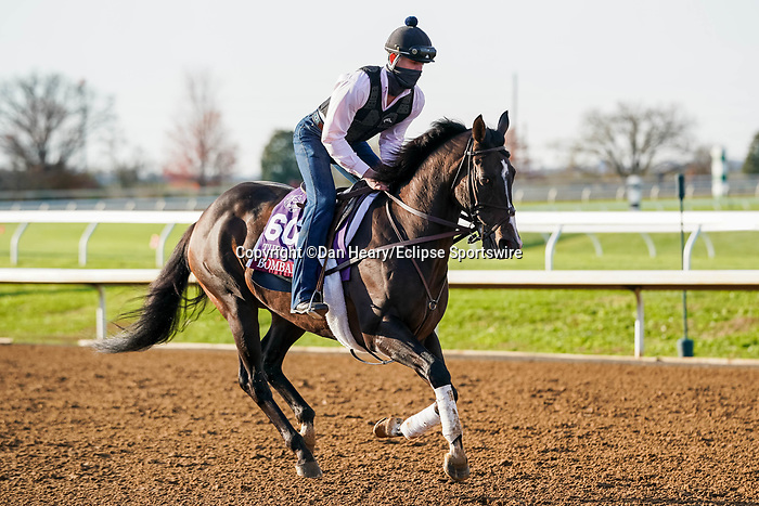 November 5, 2020: Bombard, trained by trainer Richard E. Mandella, exercises in preparation for the Breeders' Cup Turf Sprint at Keeneland Racetrack in Lexington, Kentucky on November 5, 2020. Dan Heary/Eclipse Sportswire/Breeders Cup/CSM