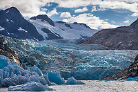 Glacier icebergs in the glacial lake formed by Nellie Juan glacier, Prince William Sound, Alaska.