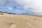 Windlblown sand marks dunes in dramatic seascape of Pacific Ocean beach at Nehalem Beach State Park, Oregon State Parks.  Astoria, Oregon