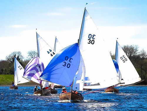 Dun Laoghaire Water Wags on Lough Ree