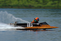 1-P (hydro)