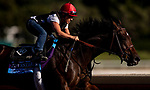 OCT 25: Breeders' Cup Juvenile  entrant Dennis' Moment, trained by Dale L. Romans, works out with Tammy Fox at Santa Anita Park in Arcadia, California on Oct 25, 2019. Evers/Eclipse Sportswire/Breeders' Cup