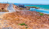 Bay Trail Map 6 - Sunnyvale to Palo Alto