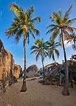Virgin Gorda, British Virgin Islands, Caribbean<br /> Plam trees on the beach among the granite boulders at The Crawl National Park
