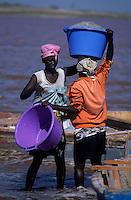 Afrique/Afrique de l'Ouest/Sénégal/Env de Dakar : Lac rose de Retba - Récolte du sel