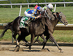 Awesome Bet (#5), Kent Desormeaux up, passes JW Blue late in the stretch to win the 5th running of the Barbaro Stakes at Delaware Park. Trainer is Steve Asmussen; owner is Mike McCarty. Stanton, DE, July 9, 2011. (Joan Fairman Kanes/Eclipsesportswire)