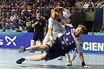 2013.01.20 Handball WC Island v France