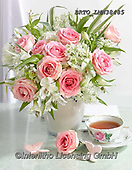 Alfredo, FLOWERS, BLUMEN, FLORES, photos+++++,BRTOLMN38485,#f#, EVERYDAY