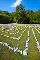 Lada's Labyrinth - Replica of an acient Roman Labyrinth of Pula,  Tramuntana Forest, Cres Island Croatia