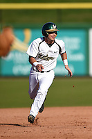 USF Bulls utility player Andres Leal (9) running the bases during a game against the Alabama State Hornets on February 15, 2015 at Bright House Field in Clearwater, Florida.  USF defeated Alabama State 12-4.  (Mike Janes/Four Seam Images)