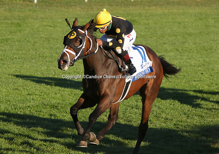 Octover 16, 2020 : #11 Stunning Sky and jockey Ricardo Santana Jr win the Pin Oak Valley View Grade 3 $150,000 for trainer Michael Maker at Keeneland Racecourse in Lexington, KY on October 16, 2020.  Candice Chavez/ESW/CSM