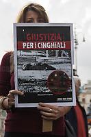 24.10.2020 - Il Virus Siamo Noi (Giustizia Per I Cinghiali) - Animal Rights Protest In Rome