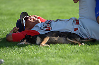Williamsport Crosscutters outfielder Jiandido Tromp (23) gets stretched as Haley, groundskeeper Don Rock's dog, lays next to him before a game against the Batavia Muckdogs on July 27, 2014 at Dwyer Stadium in Batavia, New York.  Batavia defeated Williamsport 6-5.  (Mike Janes/Four Seam Images)