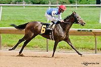 Malabar Anne winning at Delaware Park on 6/8/13