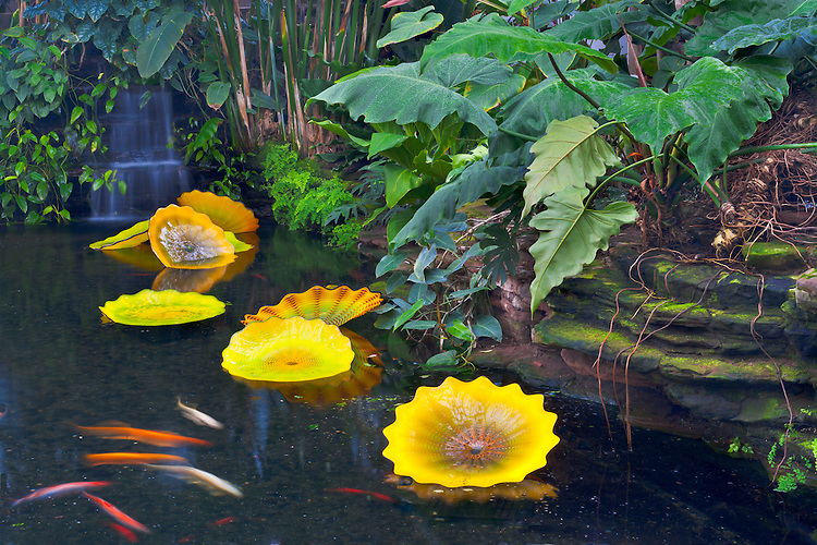 Chihuly glass sculptures in the fishpond at Garfield Park Conservatory; Chicago, IL