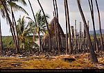 Hale o Keawe Heaiu, thatched Royal Mausoleum and Ki'i Guardians, Pu'uhonua o Honaunau, Place of Refuge, Pu'uhonua o Honaunau National Historical Park, South Kona Coast, Big Island of Hawaii
