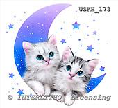 Kayomi, CUTE ANIMALS, paintings, WishUponAStar_M, USKH173,#AC# stickers illustrations, pinturas ,everyday