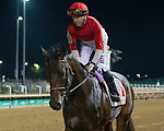 September 18, 2021: #11 Bourbon Heist in the post parade G3 Iroquois S. at Churchill Downs in Louisville, Kentucky on September 18, 2021. Jessica Morgan/Eclipse Sportswire.