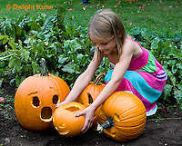 DC08-502z Placing Jack-o-Lanterns Pumpkins in garden after Halloween, PRA.