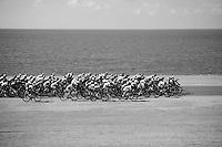 peloton moving along the dutch shoreline<br /> <br /> Eneco Tour 2013<br /> stage 3: Oosterhout - Brouwersdam (187km)