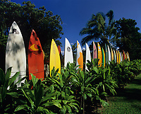 Colorful Surfboard Fence, Maui, Hawaii, USA.