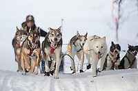 Chandler Wappett runs on the inbound trail towards the finish line of the 2016 Junior Iditarod in Willow, Alaska, AK  February 28, 2016