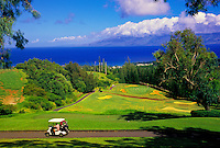 The scenic Village Course at Kapalua Resort, Maui