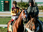 Feb 2010:  Discreetly Mine and Javier Castellano before the Risen Star Stakes at the Fairgrounds in New Orleans, La.