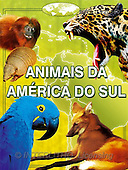 Alfredo, CUTE ANIMALS, books, paintings, BRTOLP20560,#AC# Kinderbücher, niños, libros, illustrations, pinturas