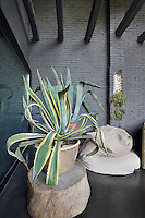 A sitting area in an industrial style space with exposed grey bricks and beams. An agave plant in a pot is placed on a wood block cut from a tree trunk.