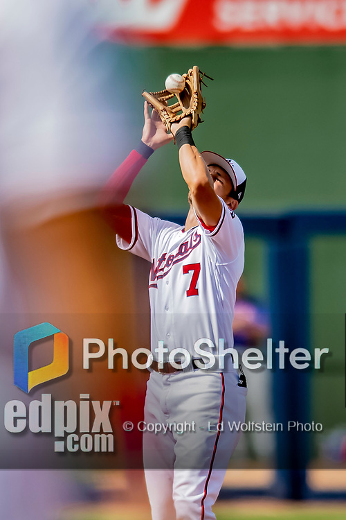 7 March 2019: Washington Nationals shortstop Trea Turner pulls in an infield fly during a Spring Training Game against the New York Mets at the Ballpark of the Palm Beaches in West Palm Beach, Florida. The Nationals defeated the visiting Mets 6-4 in Grapefruit League, pre-season play. Mandatory Credit: Ed Wolfstein Photo *** RAW (NEF) Image File Available ***