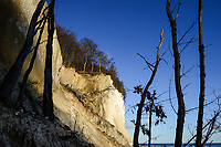 GERMANY, Ruegen, Nationalpark Jasmund , chalk cliffs / DEUTSCHLAND, Rügen, Nationalpark Jasmund, Kreideküste und Wald im Winter