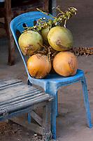Cambodia, Srah Srang, Royal Bath.   Coconuts at Local Refreshment Stand.