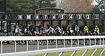 Newsdad and Julien Leparoux win the 55th running of the Fayette Grade 2 $150,000 on the closing day of the fall meet at Keeneland racecourse.  October 27, 2012.