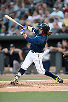 Designated hitter Jay Jabs (7) of the Columbia Fireflies bats in a game against  the Charleston RiverDogs on Friday, June 9, 2017, at Spirit Communications Park in Columbia, South Carolina. Columbia won, 3-1. (Tom Priddy/Four Seam Images)