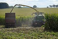 GERMANY, Sagard maize harvest with machine harvester John Deere 8600i the maize is used for biogas plants or as animal fodder / DEUTSCHLAND, Sagard, Maisernte mit John Deere 8600i Hechsler, Mais wir als Tierfutter und in Biogasanlagen verwendet
