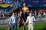 Wise Dan (3) with jockey John Valazquez rides to the winners circle after winning the Canadian Stakes (Grade I) at Woodbine Race Course in Ontario, Canada on September 16, 2012.
