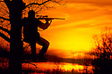 00646-031.14 Hunting: Silhouetted hunter with scoped rifle takes aim while on tree stand at magic hour.