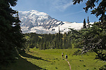 Wonderland Trail, Mount Rainier National Park, Washington State, Pacific Northwest, U.S.A., Moraine Park, Hikers daytripping, released,