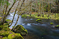 Clear mountain water flows in the pristine and scenic North Umpqua River located in south Central Oregon.