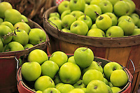Granny Smith apples in basket at farmers market on Sauvie Island, Oregon