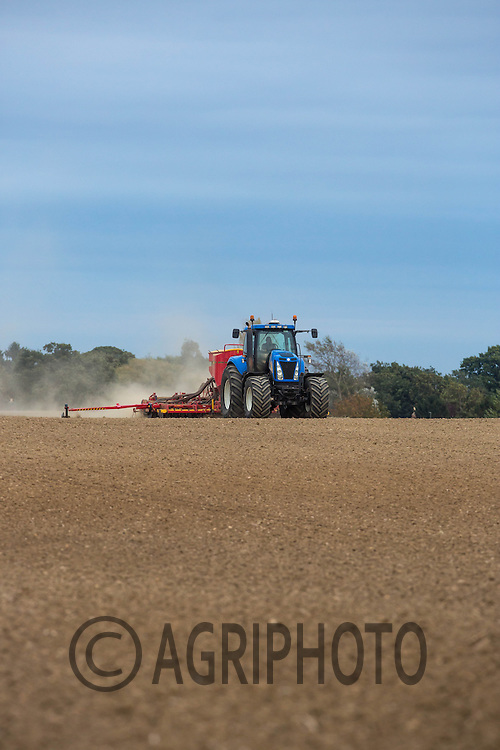 New Holland  drilling wheat with a Vaderstad drill in the late evening sunshine Autumn 2014<br /> Picture Tim Scrivener 07850 303986