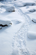 Snowshoe tracks crossing the snow covered / frozen Little River along North Twin Trail during the winter months in the White Mountains, New Hampshire USA