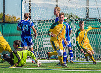 28 September 2013: University of Vermont Catamount Defenseman Salvatore Borea, a Senior from New Canaan, CT, celebrates his goal against the Hartwick College Hawks at Virtue Field in Burlington, Vermont. The Catamounts shut out the visiting Hawks 1-0 on Borea's goal in the second half of play. Mandatory Credit: Ed Wolfstein Photo *** RAW (NEF) Image File Available ***
