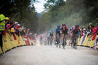 Geraint Thomas (GBR/Ineos) & Egan Bernal Gomez (COL/Ineos) side by side up the gravel section in the final stretch to the finish line up La Planche des Belles Filles (with 350m to go)<br /> <br /> Stage 6: Mulhouse to La Planche des Belles Filles (157km)<br /> 106th Tour de France 2019 (2.UWT)<br /> <br /> ©kramon