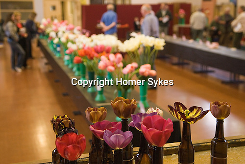 Wakefield and North of England Tulip Society annual show. Normanton near Wakefield, Yorkshire, England 2007.